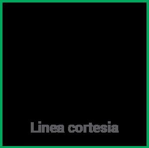 pantachimica_lineacortesia